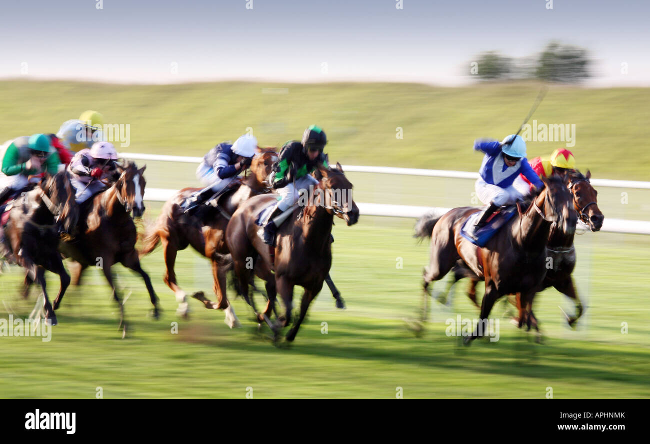 flat-race-newmarket-july-race-course-suffolk-england-APHNMK.jpg