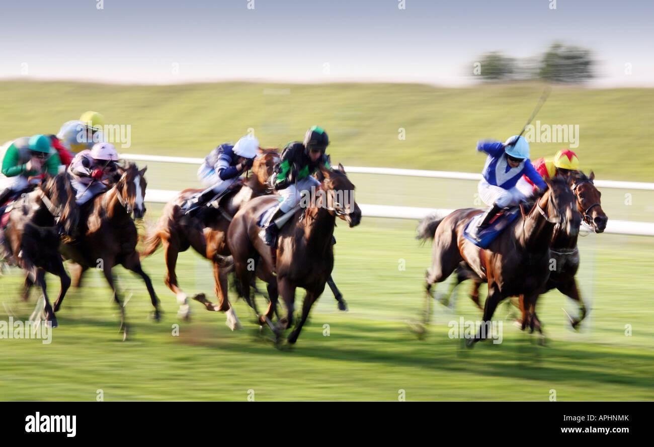 flat-race-newmarket-july-race-course-suffolk-england-APHNMK.jpg
