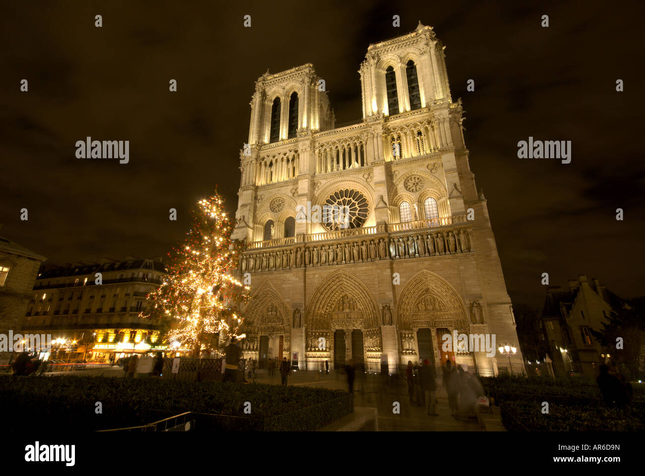 Notre Dame cathedral facade at night with Christmas tree Stock Photo ...