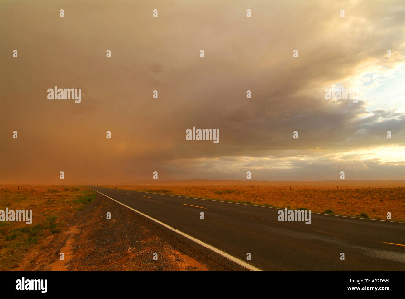 at-sunset-high-winds-pick-up-dust-and-sand-to-create-a-storm-of-particulate-AR7DW9.jpg