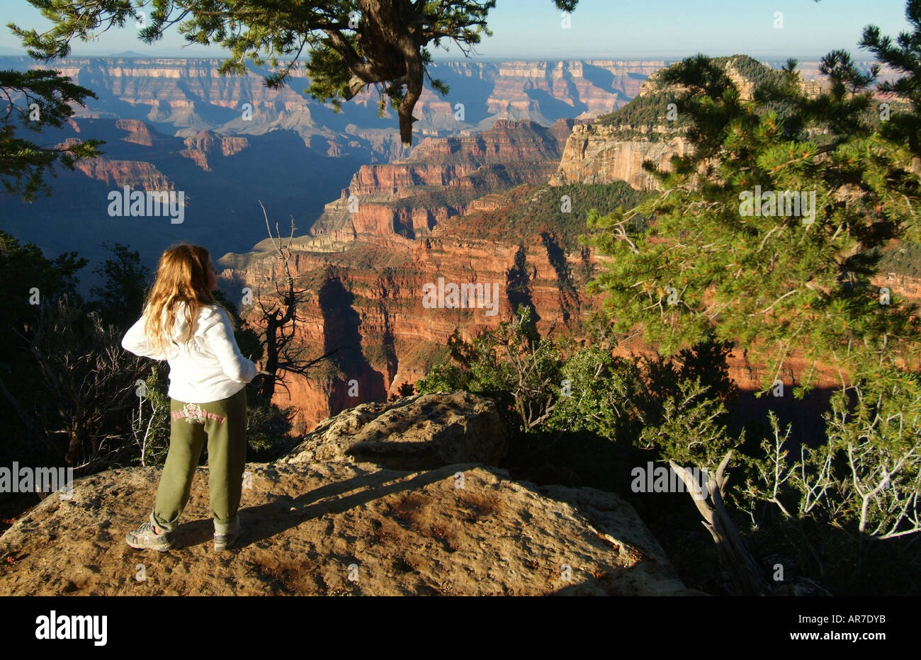 an-11-yr-old-girl-looks-out-into-the-grand-canyon-from-the-north-rim-AR7DYB.jpg
