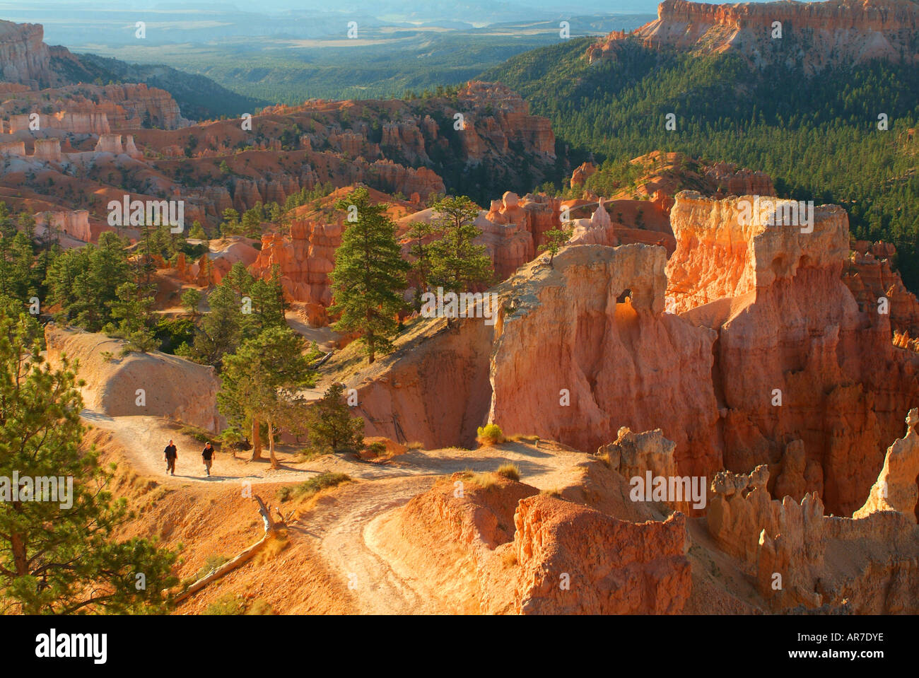 the-queens-garden-trail-takes-hikers-down-to-the-bryce-amphitheater-AR7DYE.jpg
