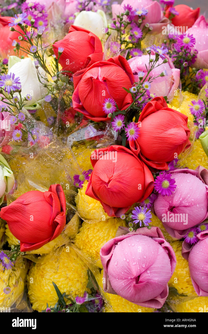 Colorful bouquet of lotus flowers in an outdoor market in singapore colorful bouquet of lotus flowers in an outdoor market in singapore mightylinksfo Images