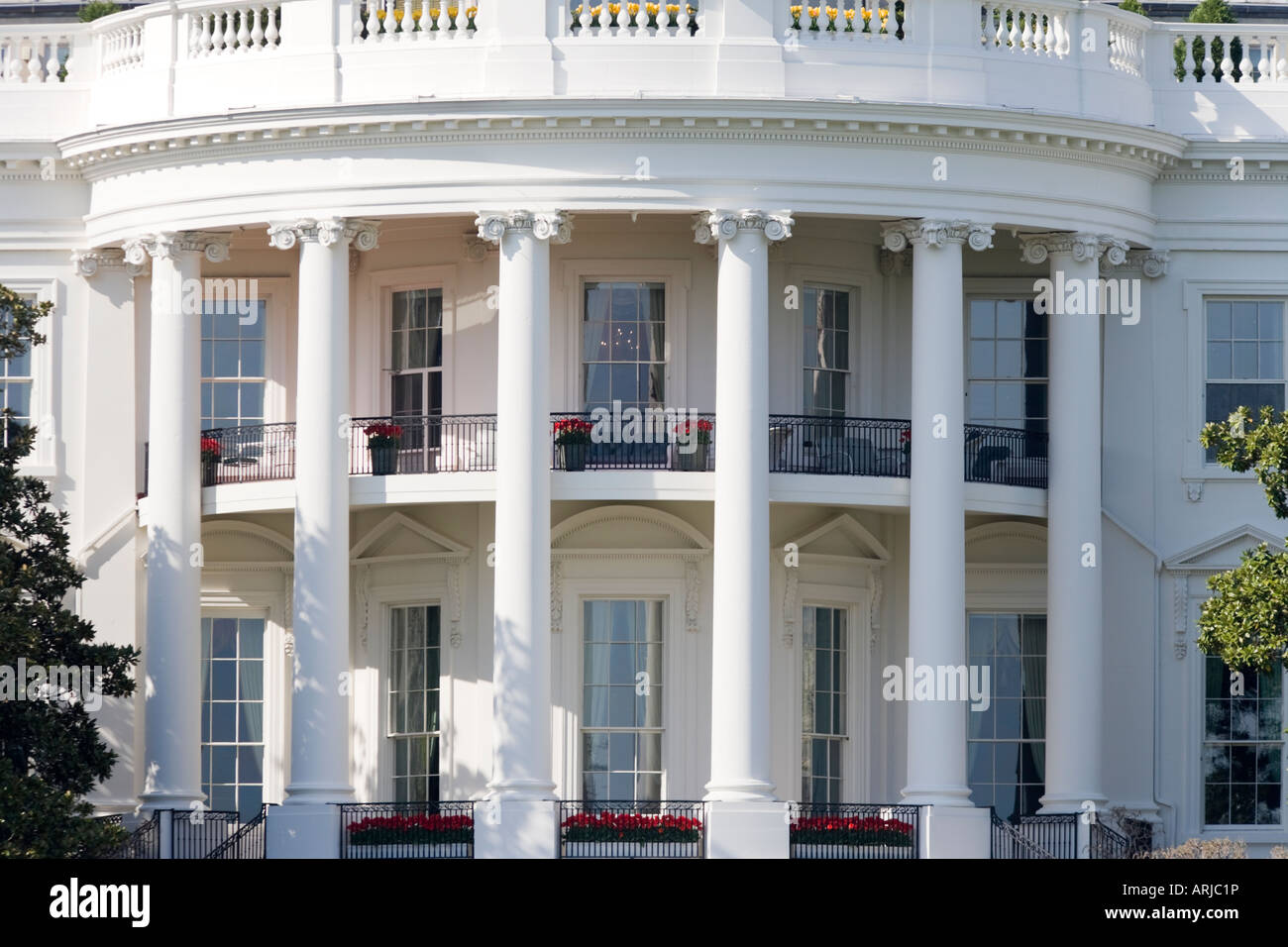 https://c7.alamy.com/comp/ARJC1P/the-truman-balcony-with-tulips-close-up-of-the-rear-of-the-white-house-ARJC1P.jpg