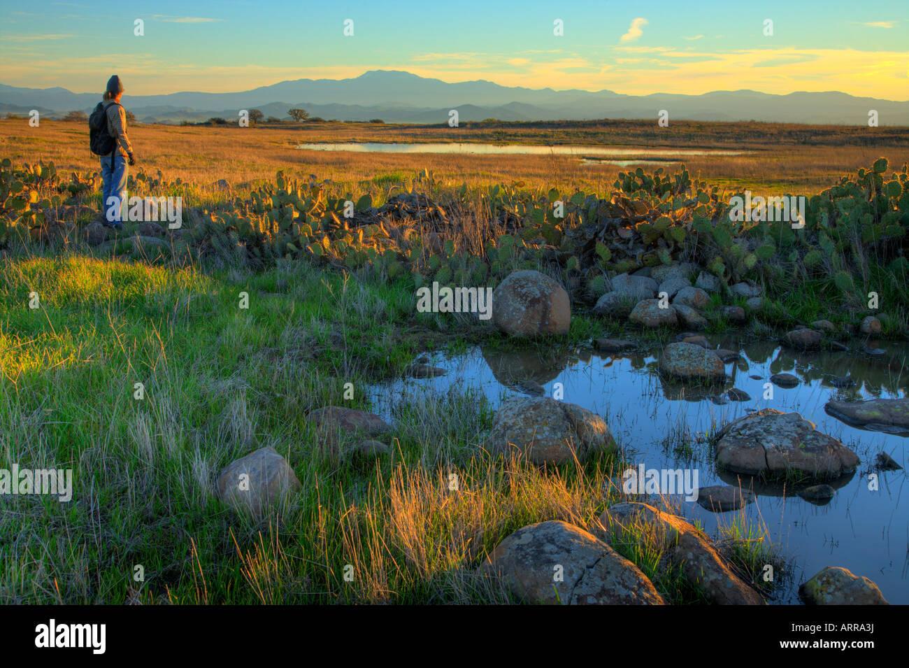 Early morining hiker at sunrise at the vernal pools Santa Rosa Plateau Ecological Reserve riverside county california Stock Photo