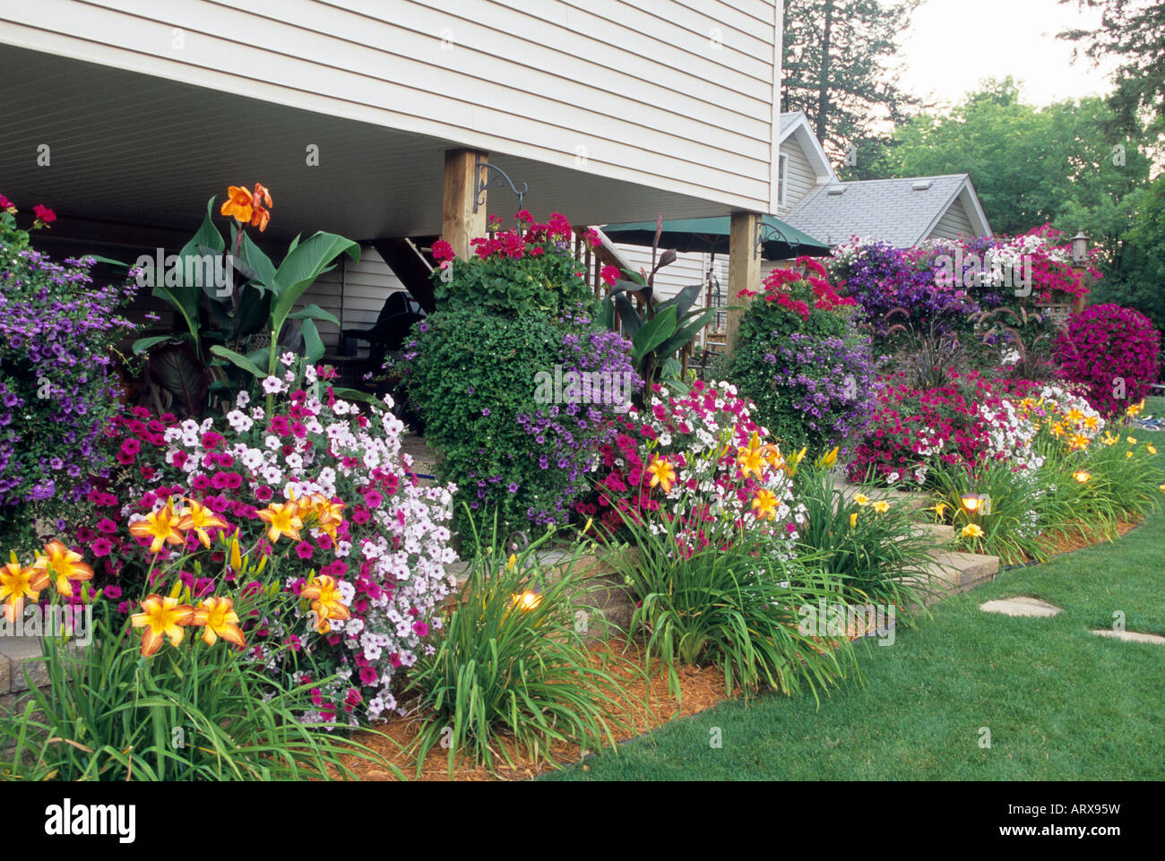 Tidal Wave Petunias Stock Photos U0026 Tidal Wave Petunias Stock Images - Alamy