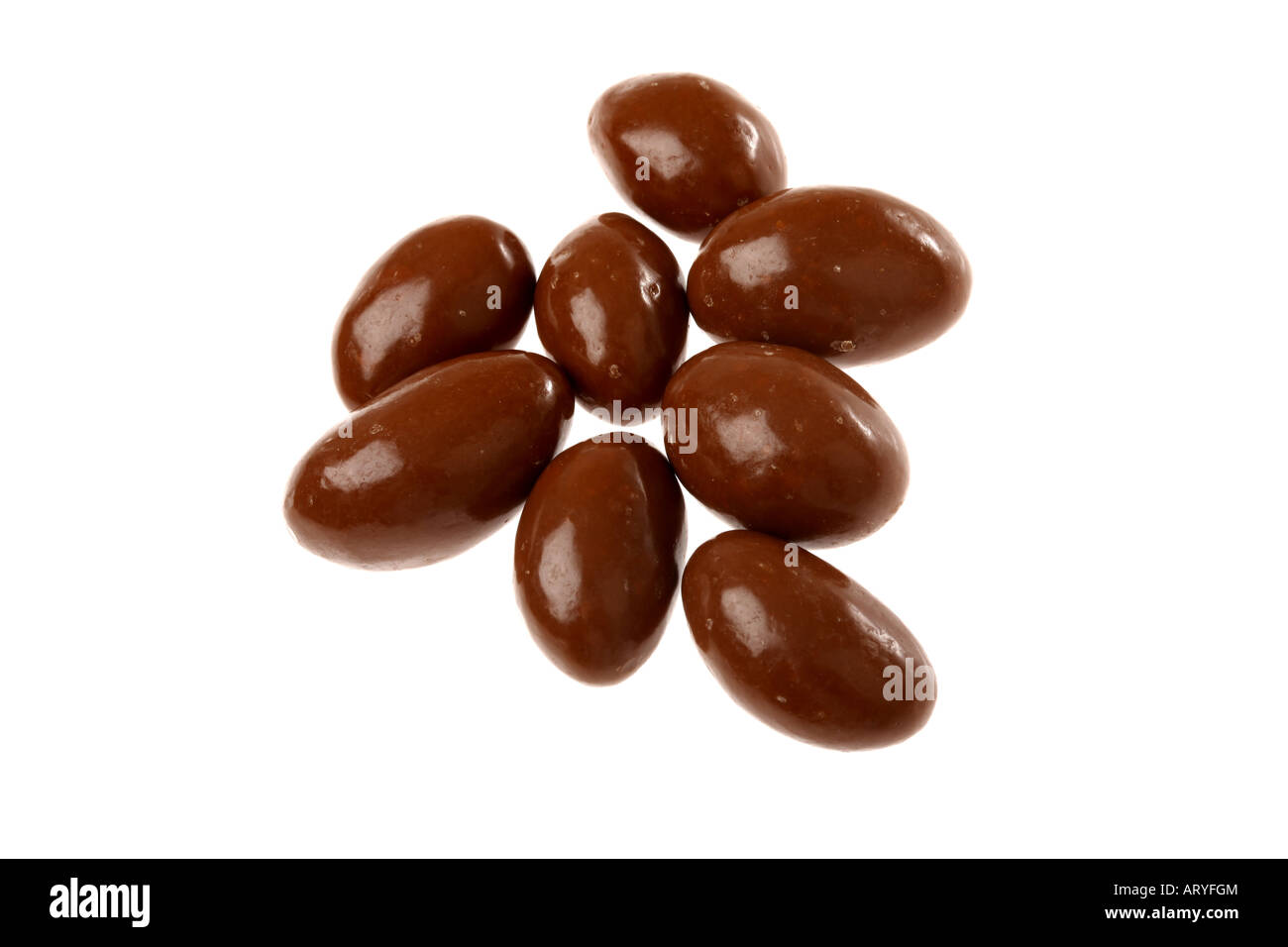 Chocolate Covered Brazil Nuts Stock Photo