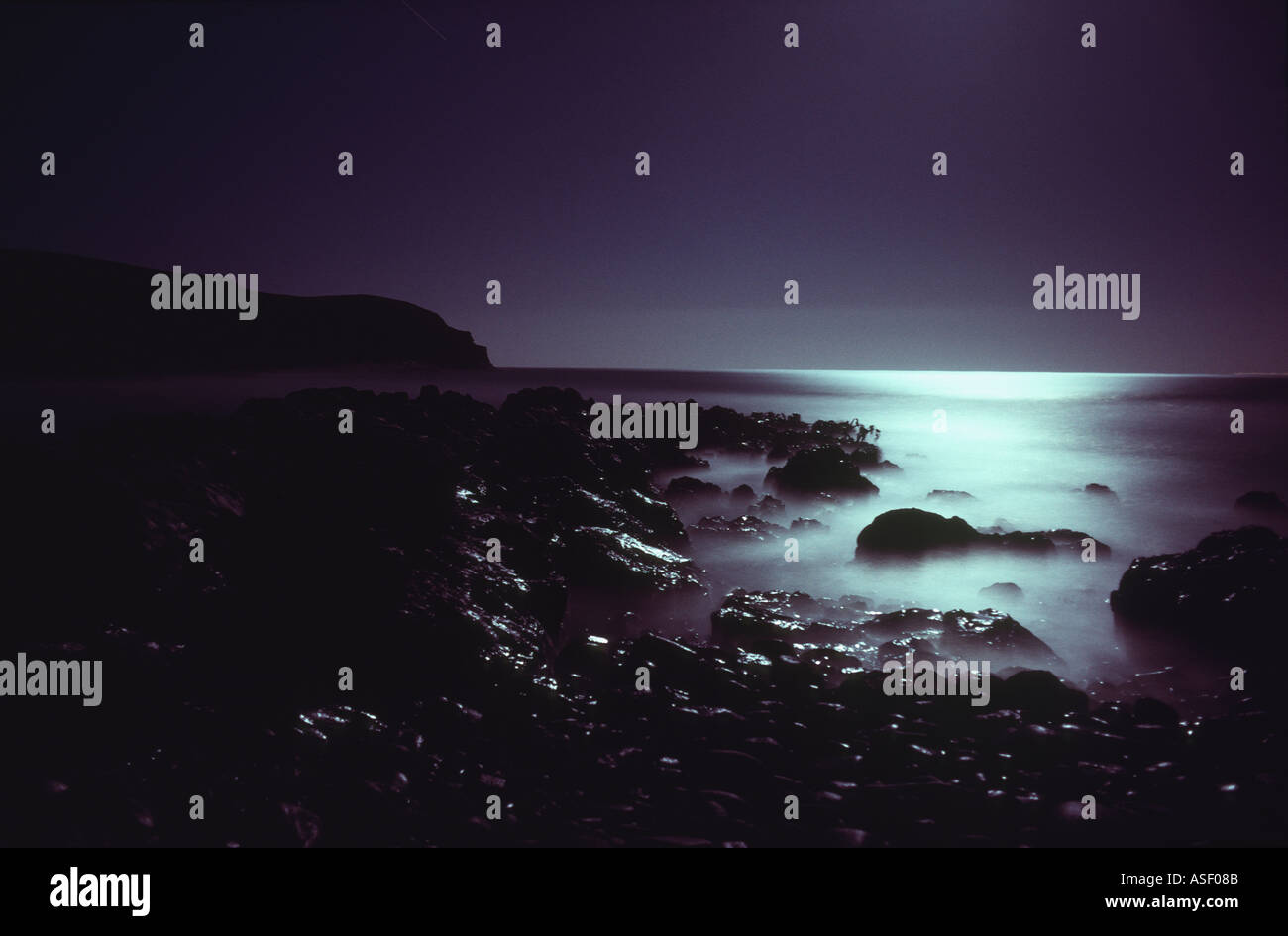 Seascape by moonlight Time exposure of rocky coastline lit only by moonlight Bull kelp Otago New Zealand - Stock Image