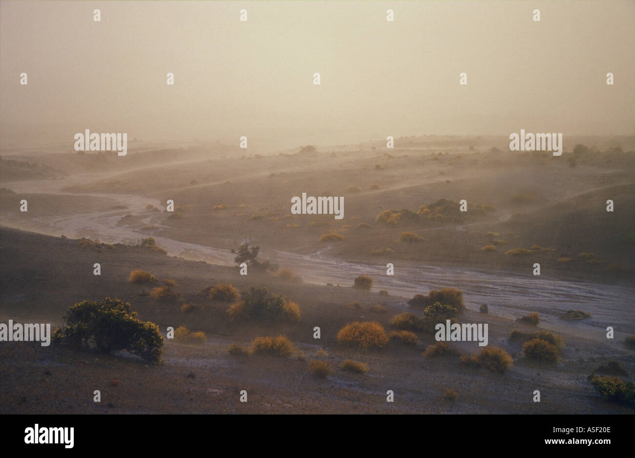 Heavy rain on Rangipo Desert Tongariro National Park New Zealand Flowing stream Pumice ash scoria grit Tussock shrubs - Stock Image