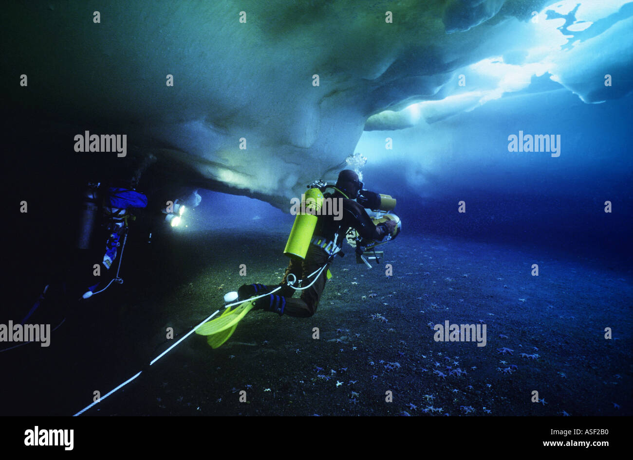 Underwater film crew camera lights diving under sea ice in shallows along shoreline Erebus Bay Ross Island Antarctica - Stock Image
