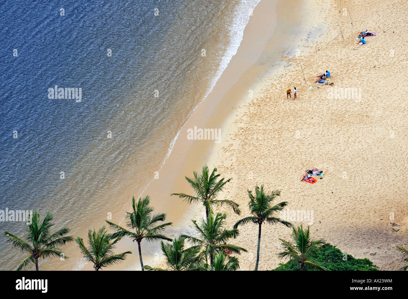 Beach with palm trees and anglers, Rio de Janeiro, Brazil - Stock Image