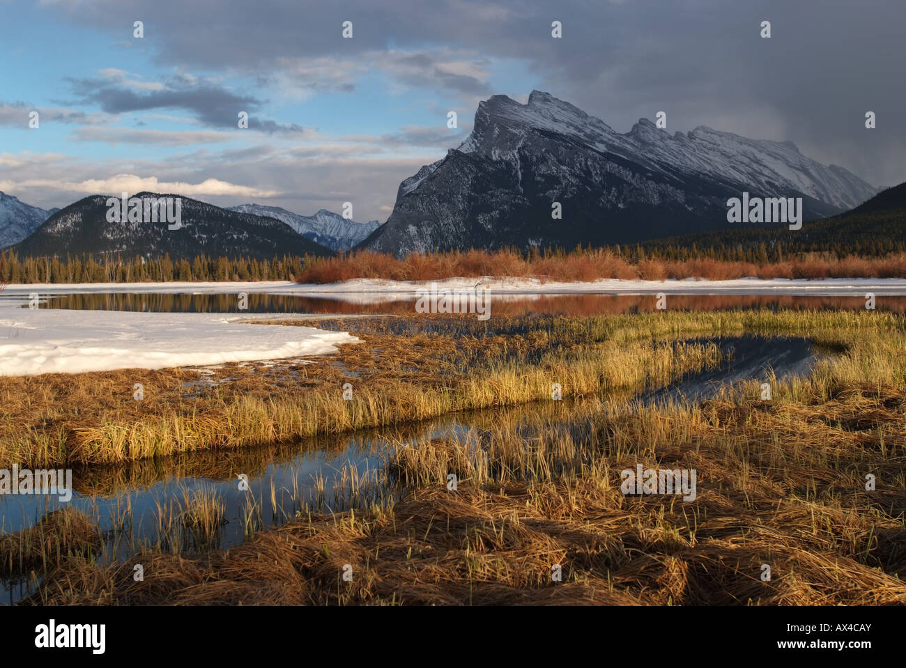 canada-alberta-banff-banff-national-park-view-of-mount-rundle-from-AX4CAY.jpg