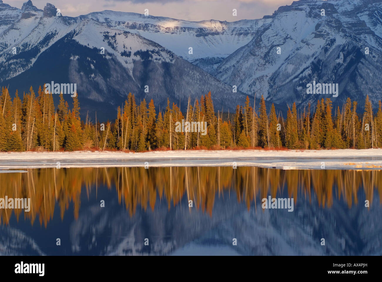 canada-alberta-banff-banff-national-park-view-of-canadian-rockies-AX4PJH.jpg