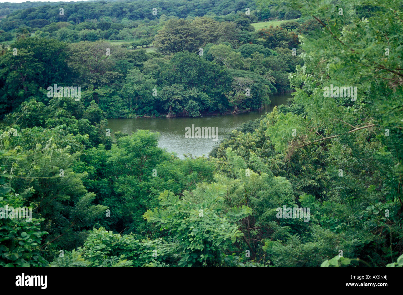 reserva-charco-verde-a-private-nature-re