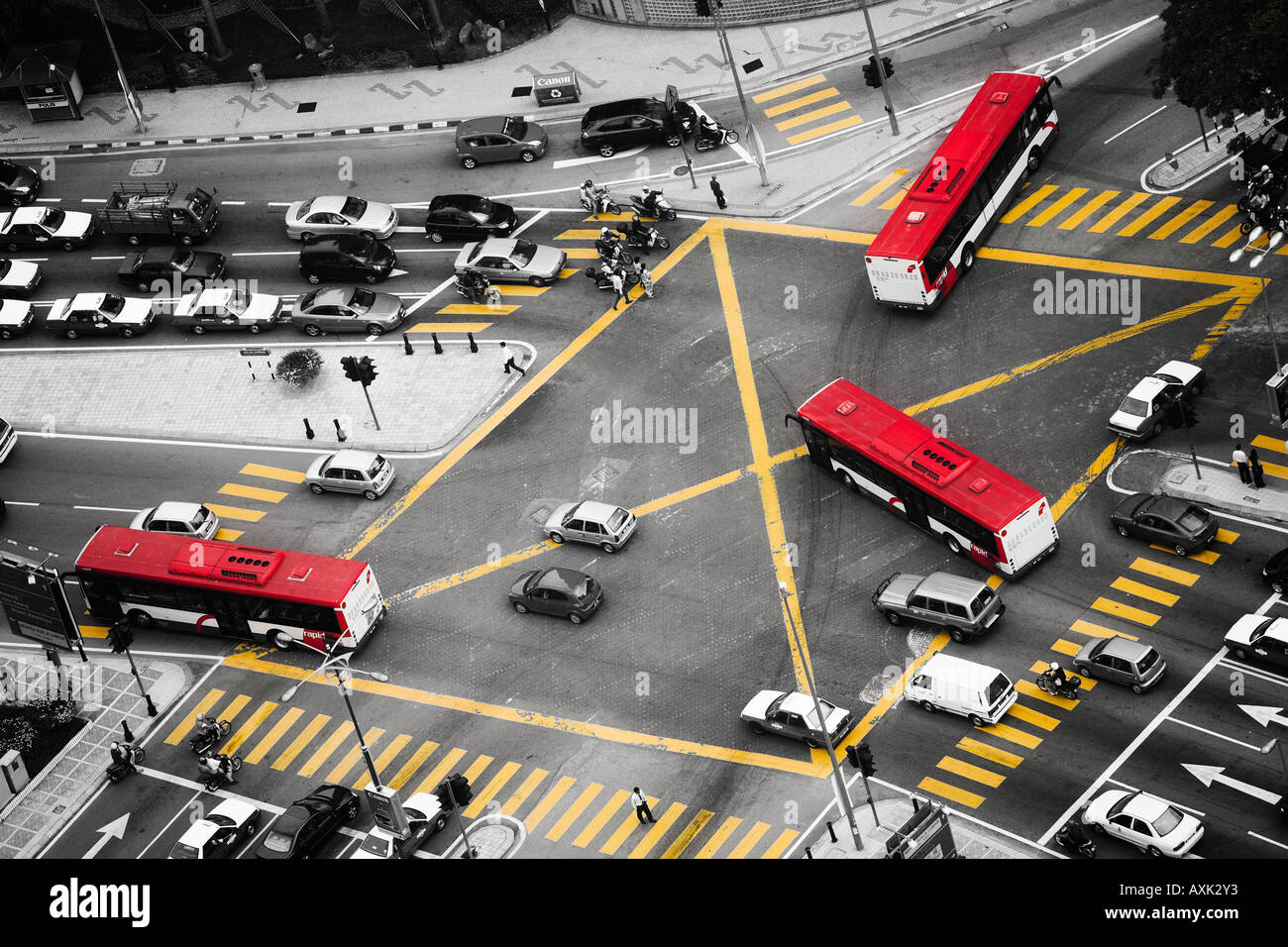busses road intersection cars traffic go stop streets black white yellow red commute transportation road travel - Stock Image