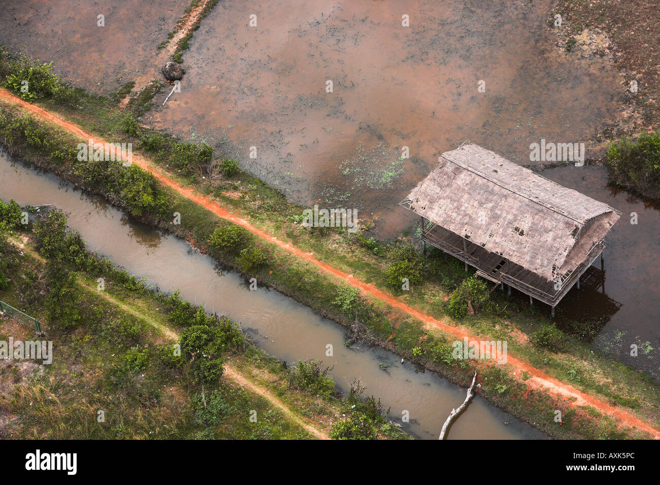 worn house in water by road flood river plants grass - Stock Image