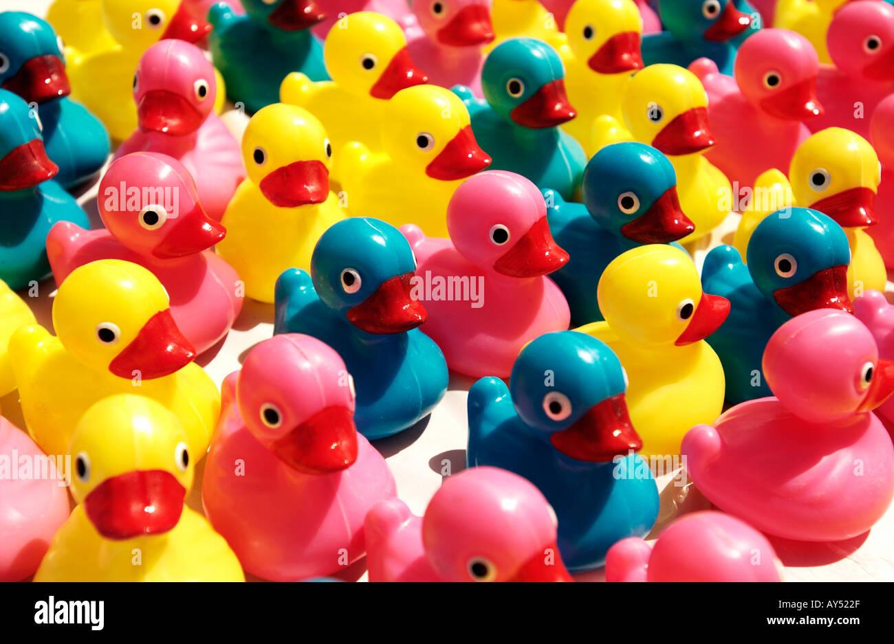 Colorful plastic ducks - Stock Image