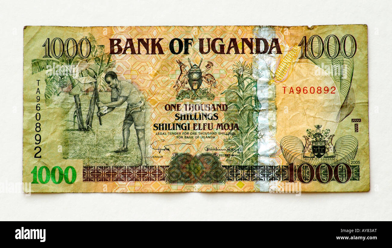 Uganda 1000 Shilling bank note - Stock Image