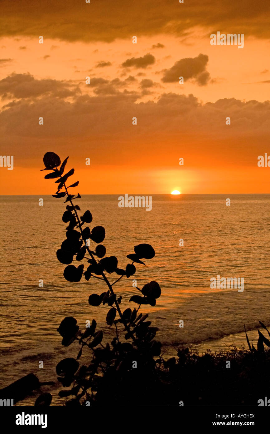 Jamaica Treasure beach sunset - Stock Image
