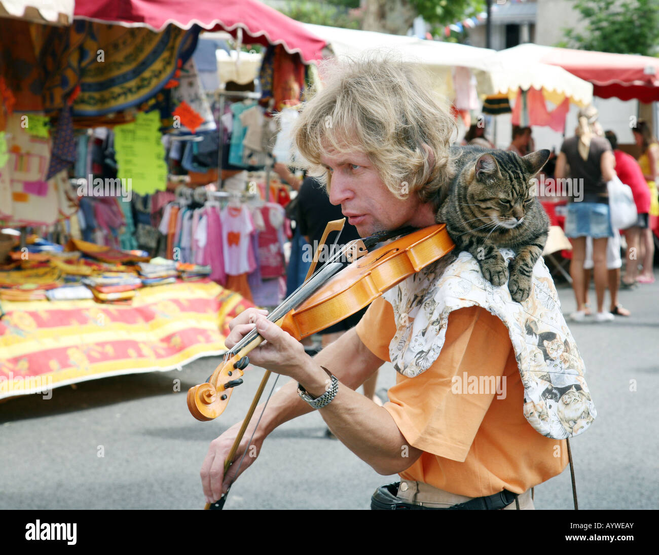 a-violin-player-in-the-market-with-his-cat-on-his-shoulders-lorgues-AYWEAY.jpg