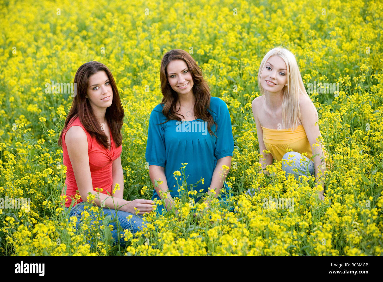 Three young women smiling and sitting in a yellow mustard field. - Stock Image