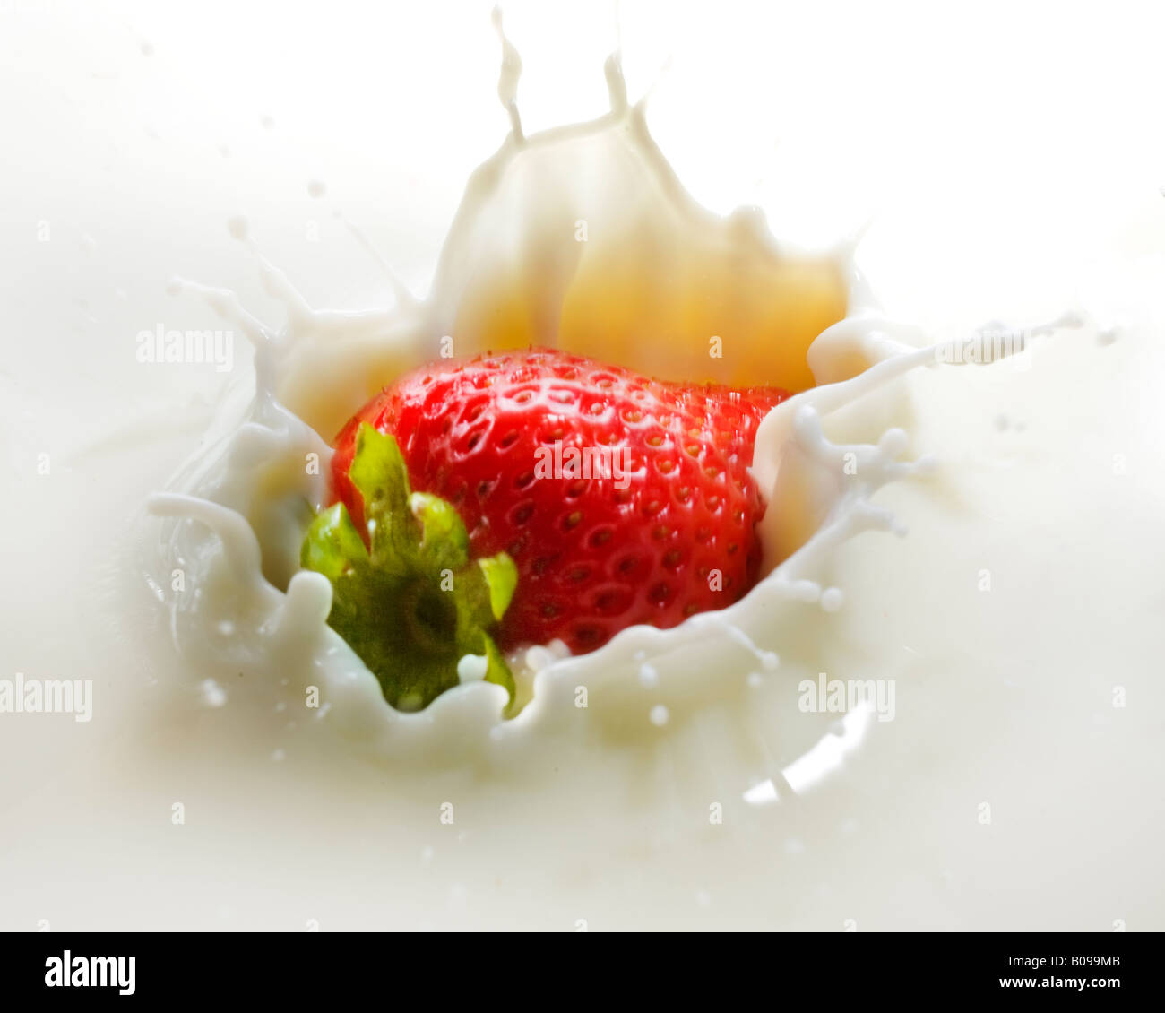 A red strawberry splashing into a creamy substance. - Stock Image