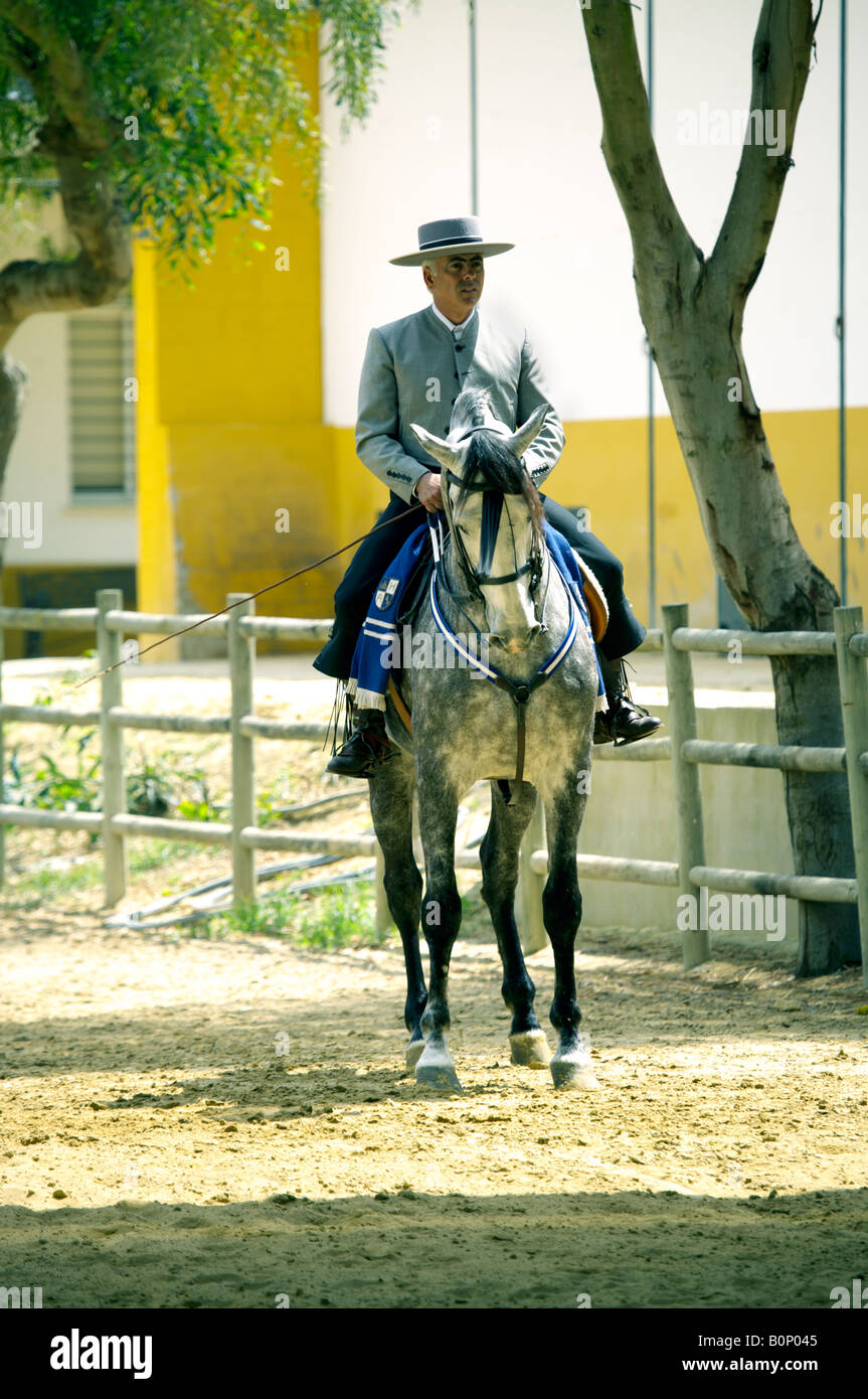 Fine Spanish horseman in traditional costume on a dapple grey Carthusian horse, at Yeguada de la Cartuja stud, Jerez, - Stock Image