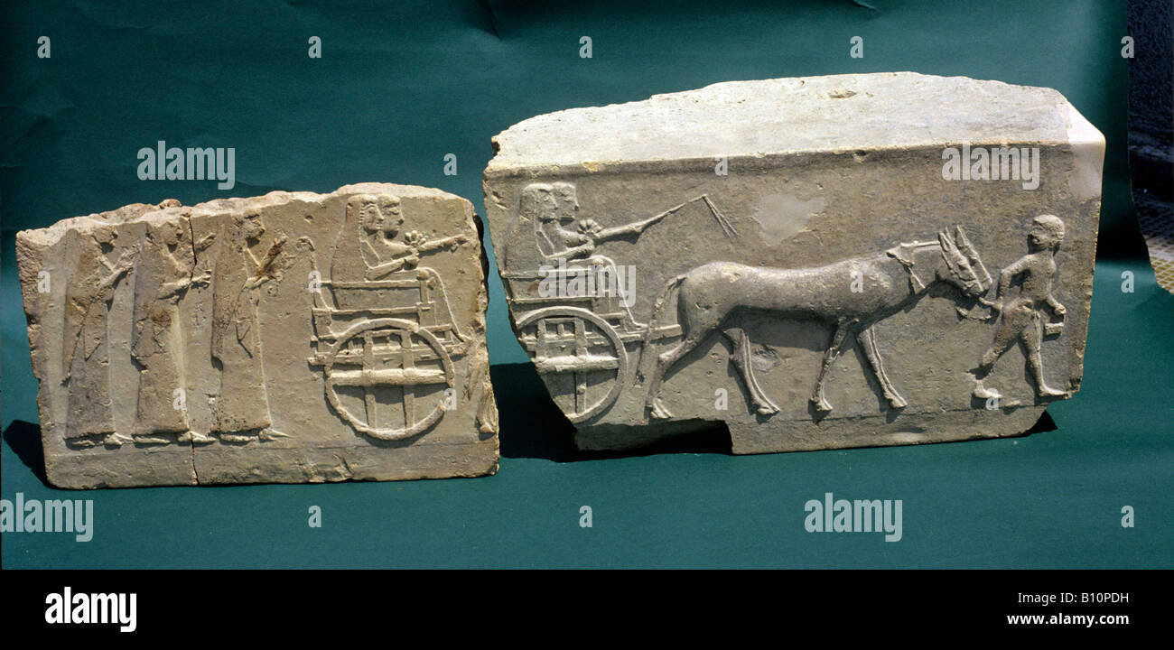 Chariot and donkeys Metaponto 5th c BC Italy  Copyright AAA Collection - Stock Image