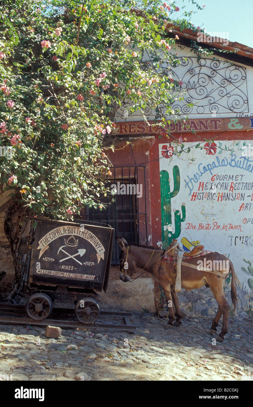 mexican-burro-and-old-mining-cart-outsid