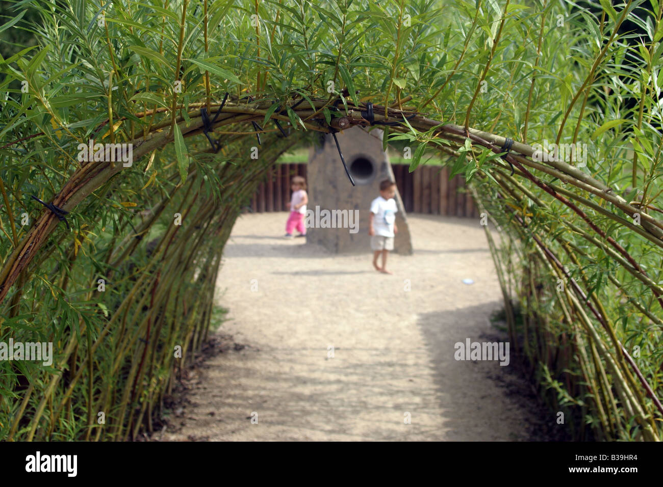 Willow arch Rufford Abbey and Country Park - Stock Image