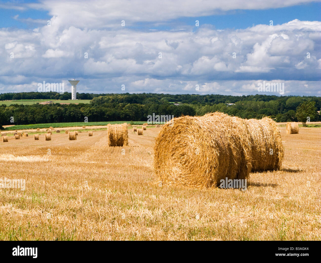 Brittany landscape, countryside of Morbihan, Brittany, France - Stock Image