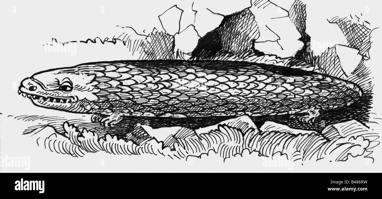 superstition, mythical creatures, Tatzelwurm, drawing after engraving, 1887, Alpine Region, 19th century, historic, - Stock Image