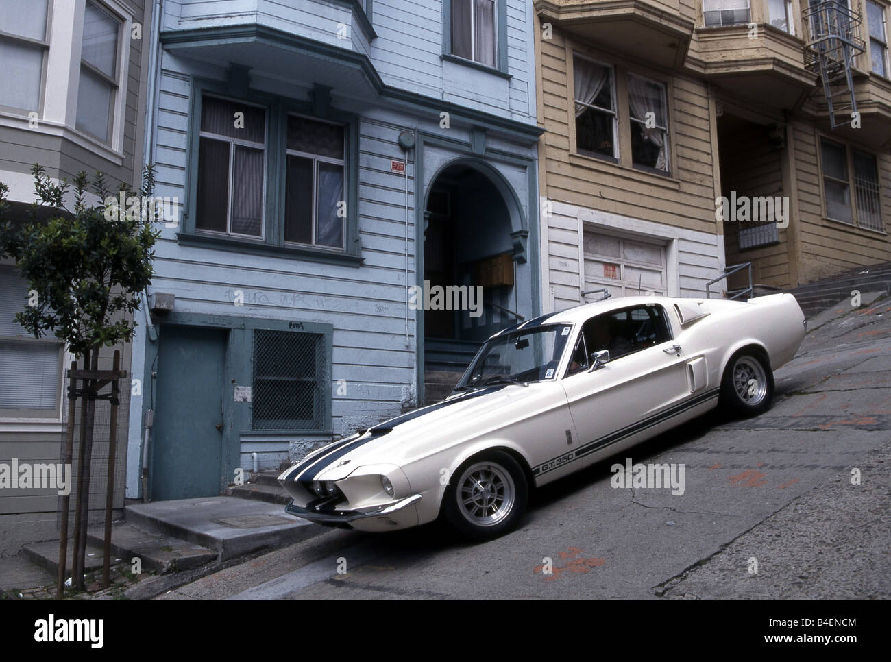 car ford mustang shelby gt model year 1967 coup coupe stock photo 19993140 alamy. Black Bedroom Furniture Sets. Home Design Ideas