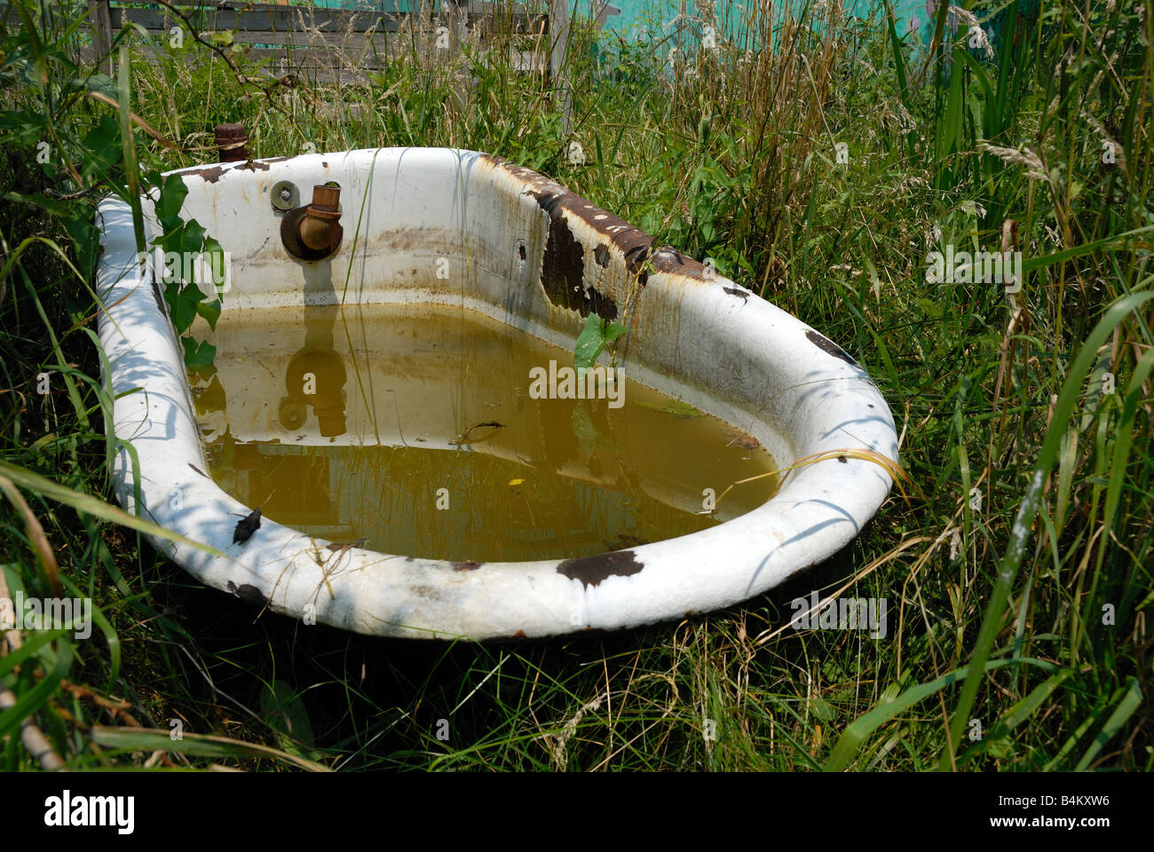 A corroded old bathtub filled with dirty water sits in a grassy ...