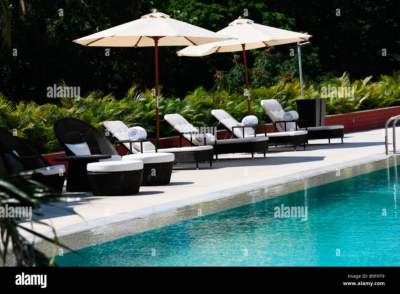 swimming pool with deck chairs in a five star hotel in keralaindia - Swimming Pool Deck Chairs