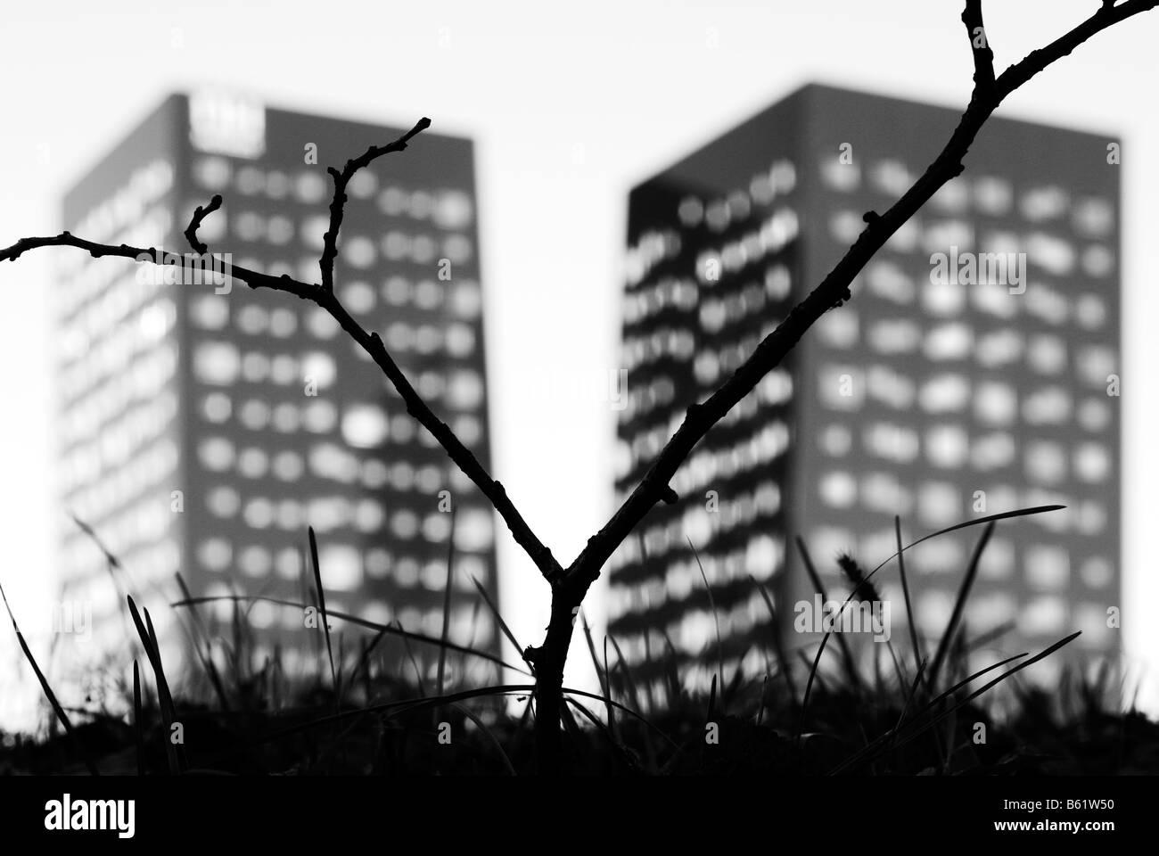 Milan. Twin skyscrapers - Stock Image
