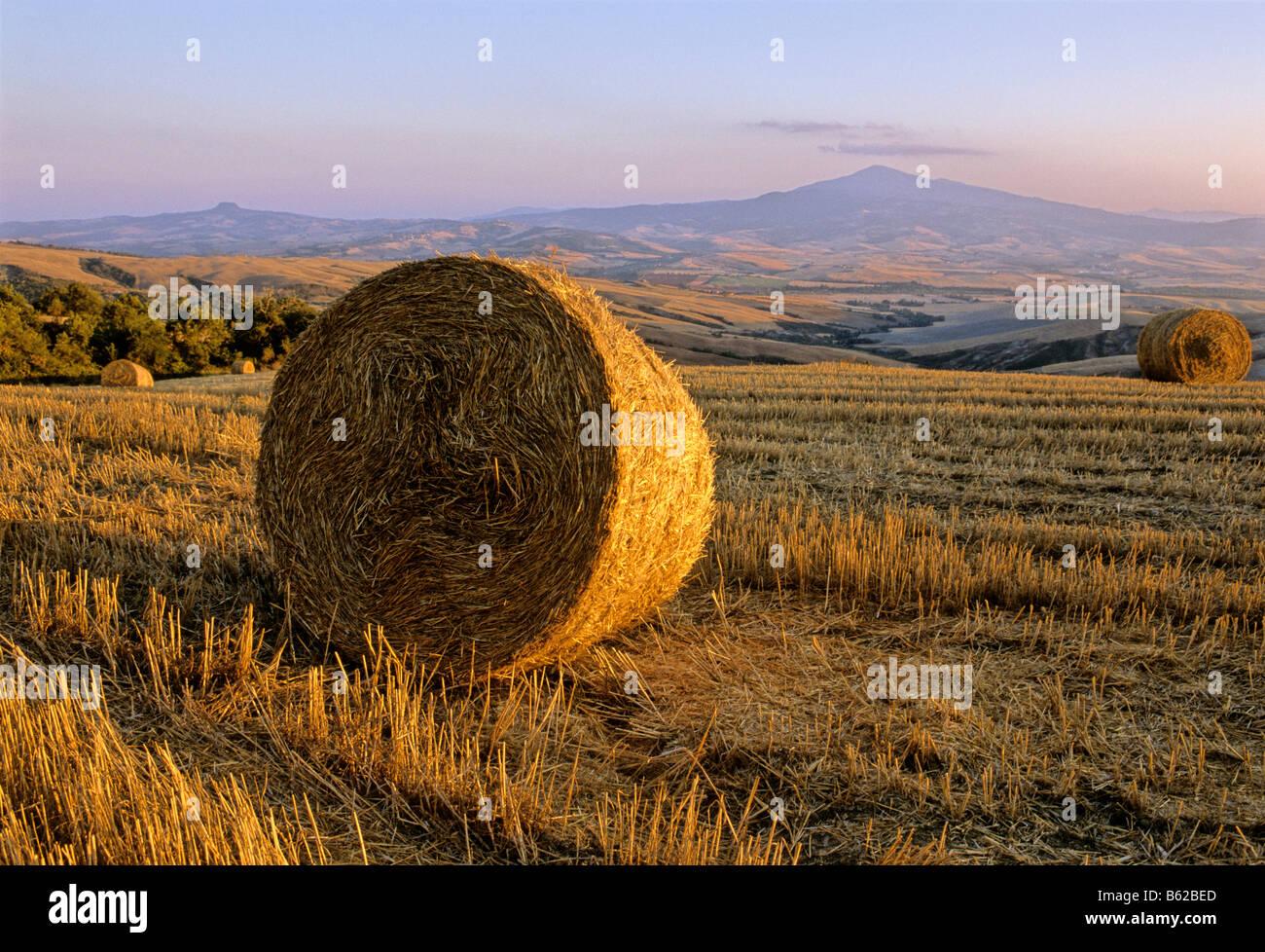 Bale of straw, harvested wheatfields, landscape around Radicofani and Monte Amiata at sunset, Val d' Orcia near - Stock Image