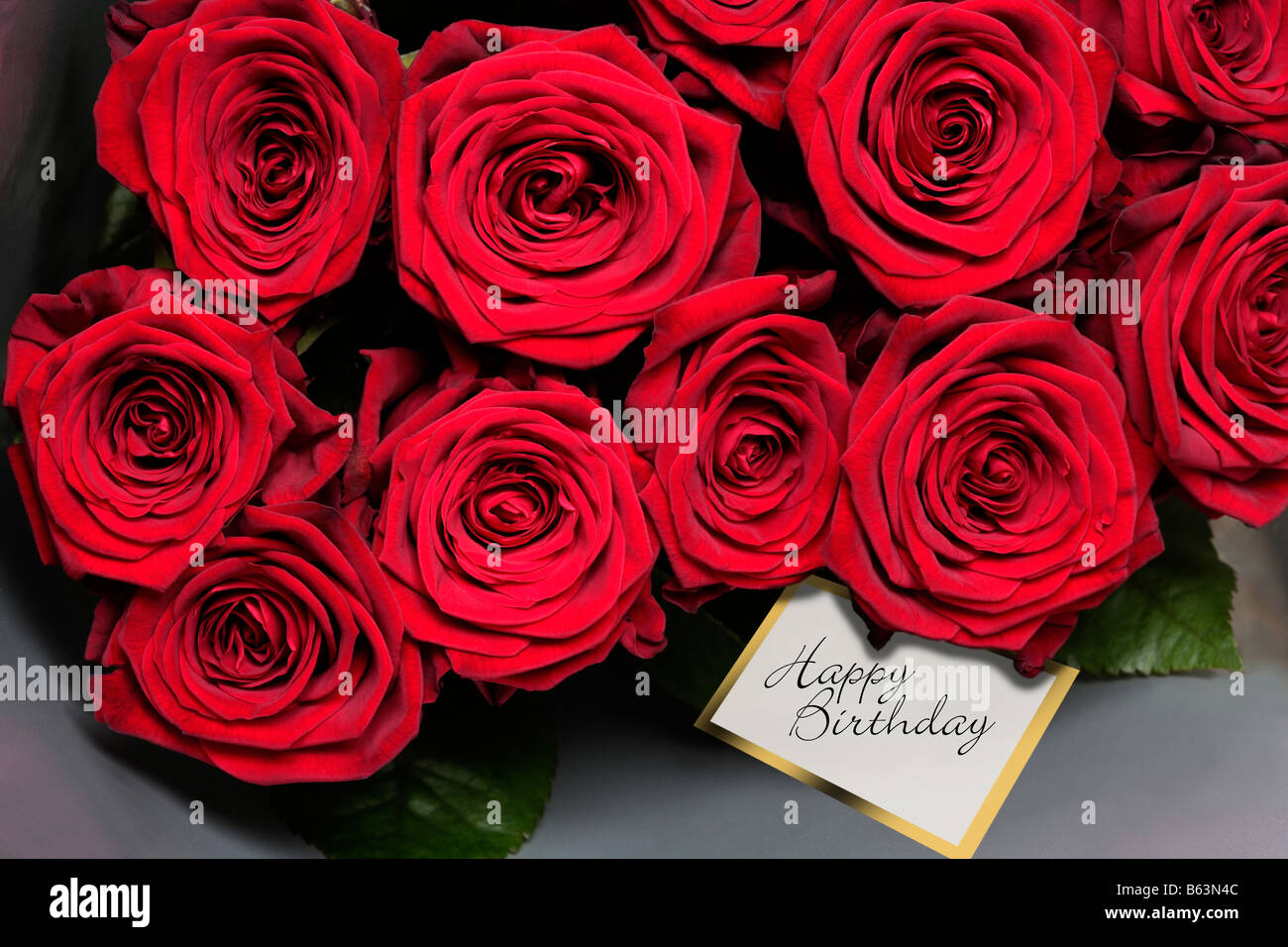 Red Roses With Happy Birthday Gift Tag Stock Photo 20980748 Alamy