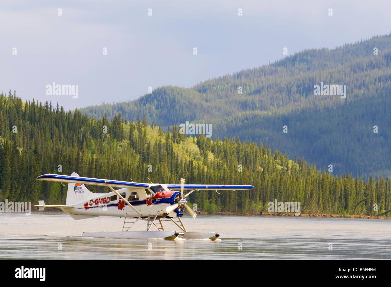 Taxiing, legendary de Havilland Canada DHC-2 Beaver, float plane, bush plane, Yukon River, Teslin River, Hootalinqua, - Stock Image
