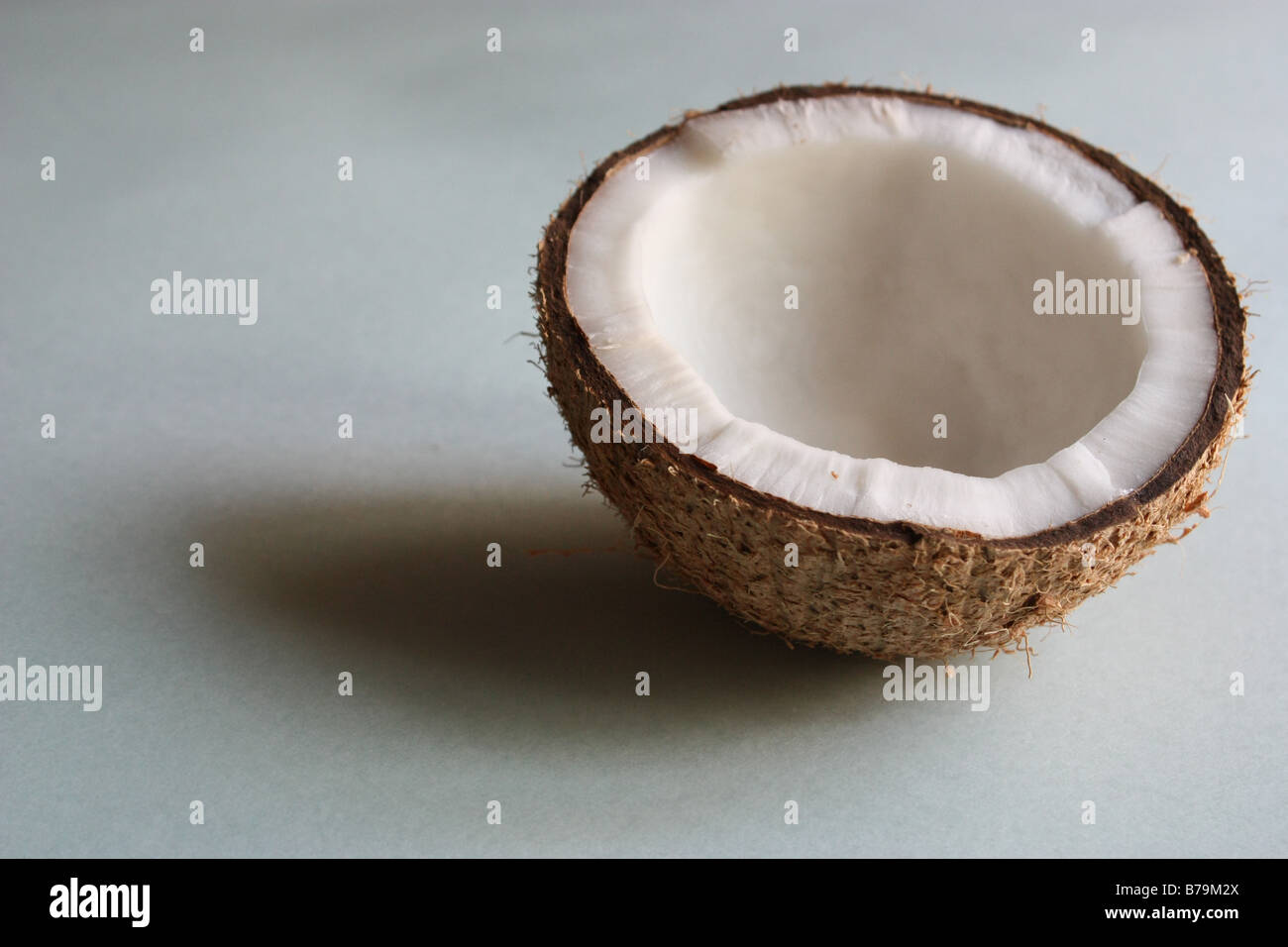 A coconut half in white background - Stock Image