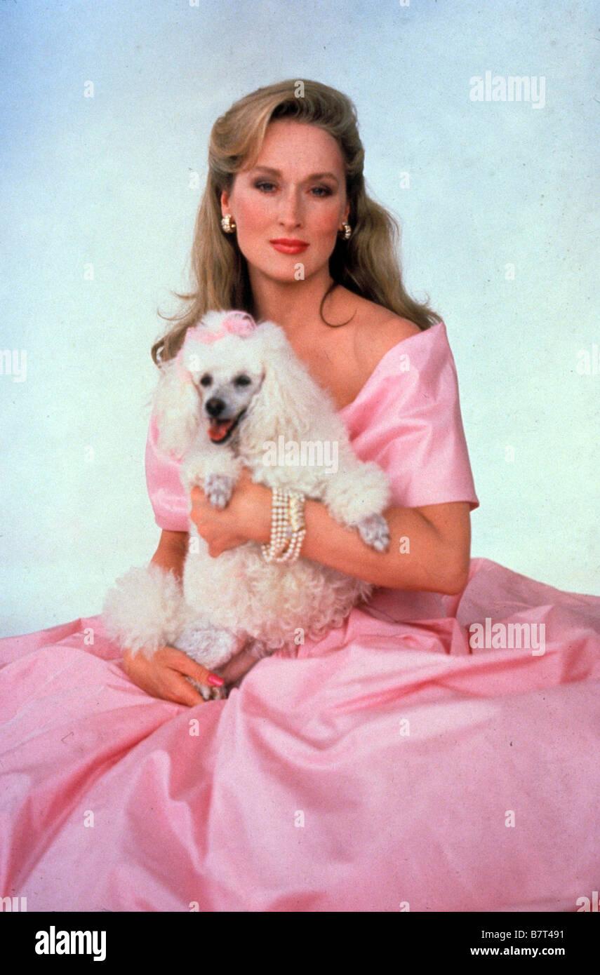 She-Devil Year: 1989 USA Meryl Streep  Director : Susan Seidelman Stock Photo