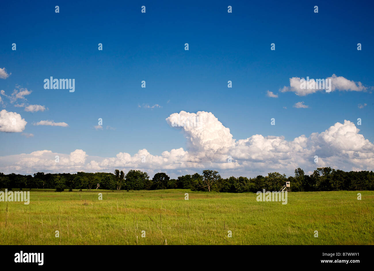 Deer hunting stand on farm fields in Southern Wisconsin - Stock Image