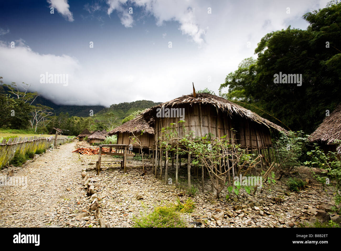 A traditional village hut in Papua Indonesia - Stock Image