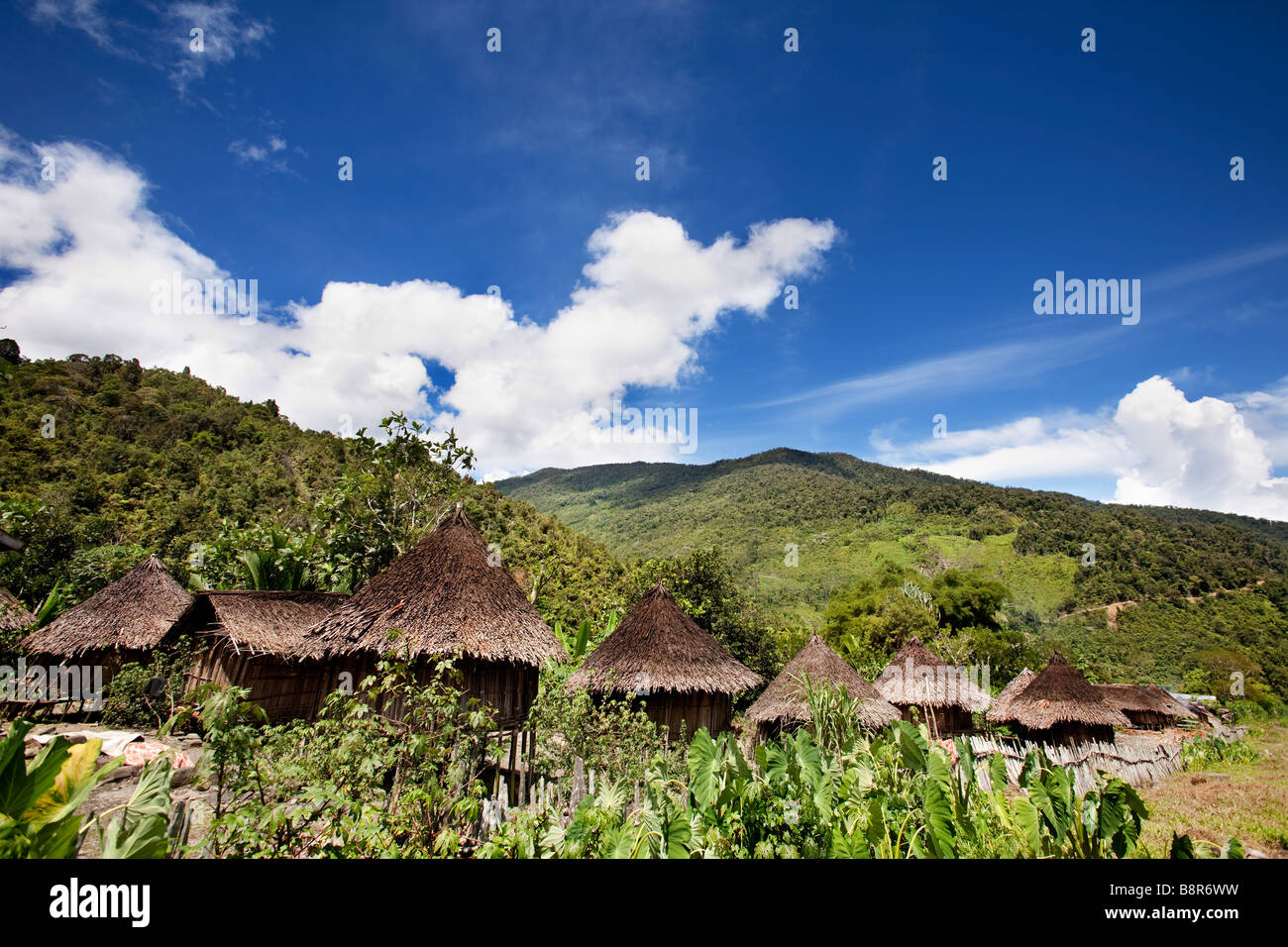 A traditional village in Papua Indonesia - Stock Image