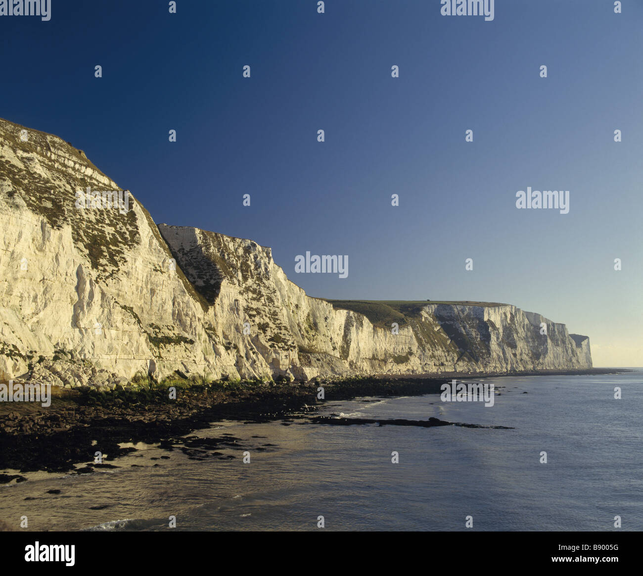 White Cliffs Of Dover In The Early Morning Stock Photo 22742428 Alamy