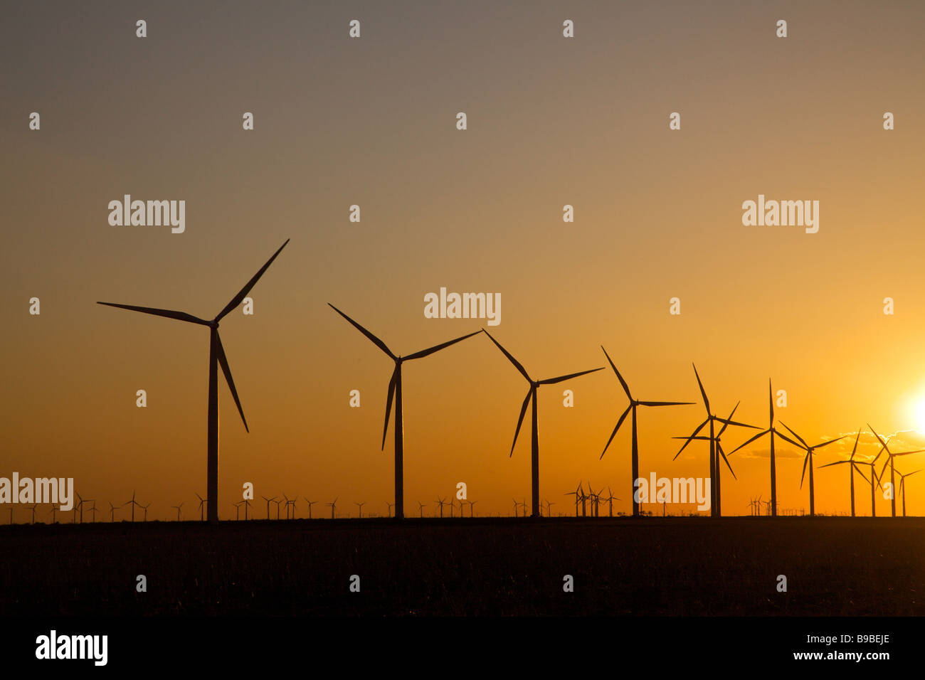 Wind turbines generating electricity at Horse Hollow Wind Farm Nolan Texas at sunset. - Stock Image