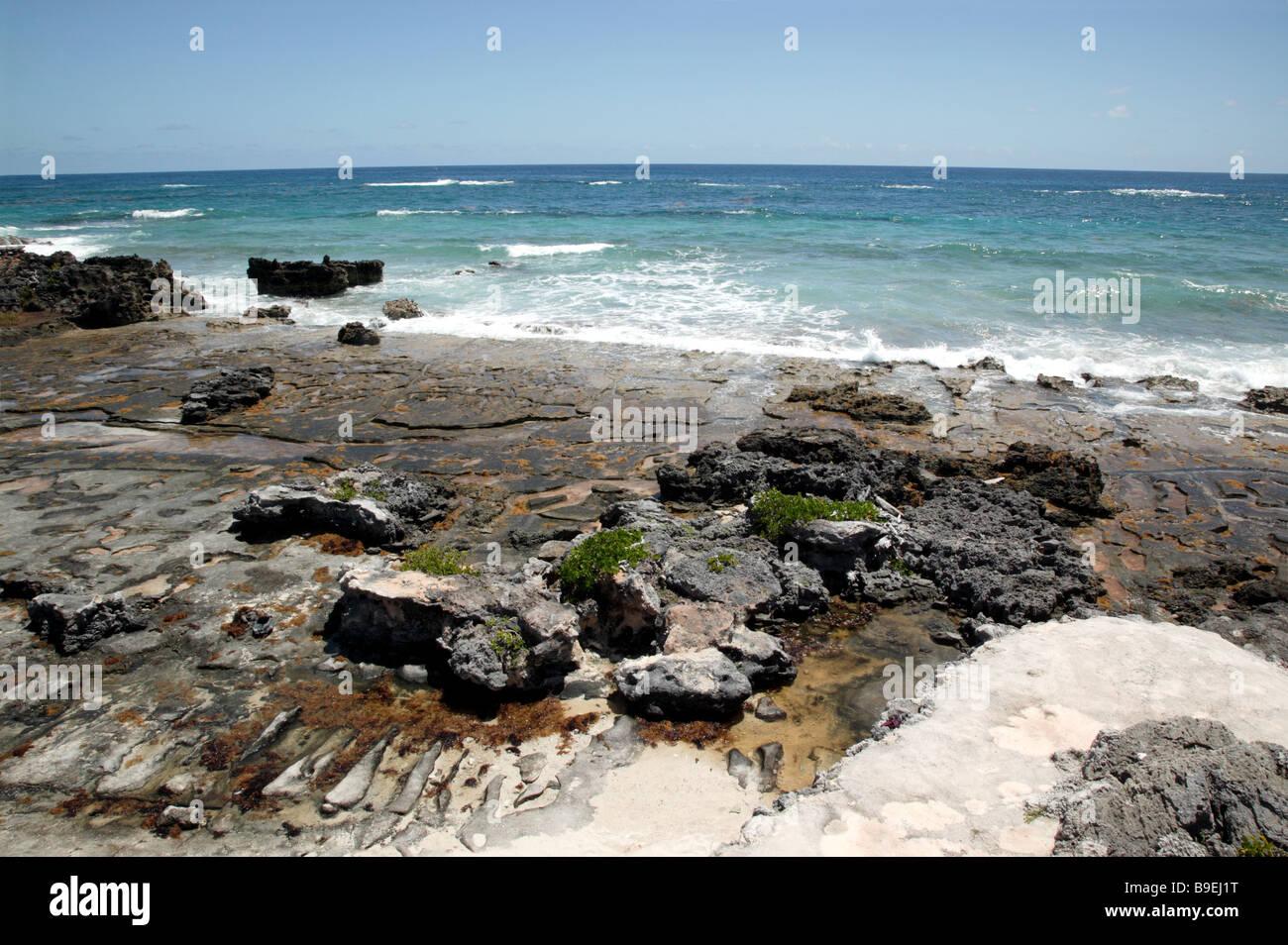 Rugged coastal scenery  near Palm Grove Gardens, Devonshire Parish Stock Photo