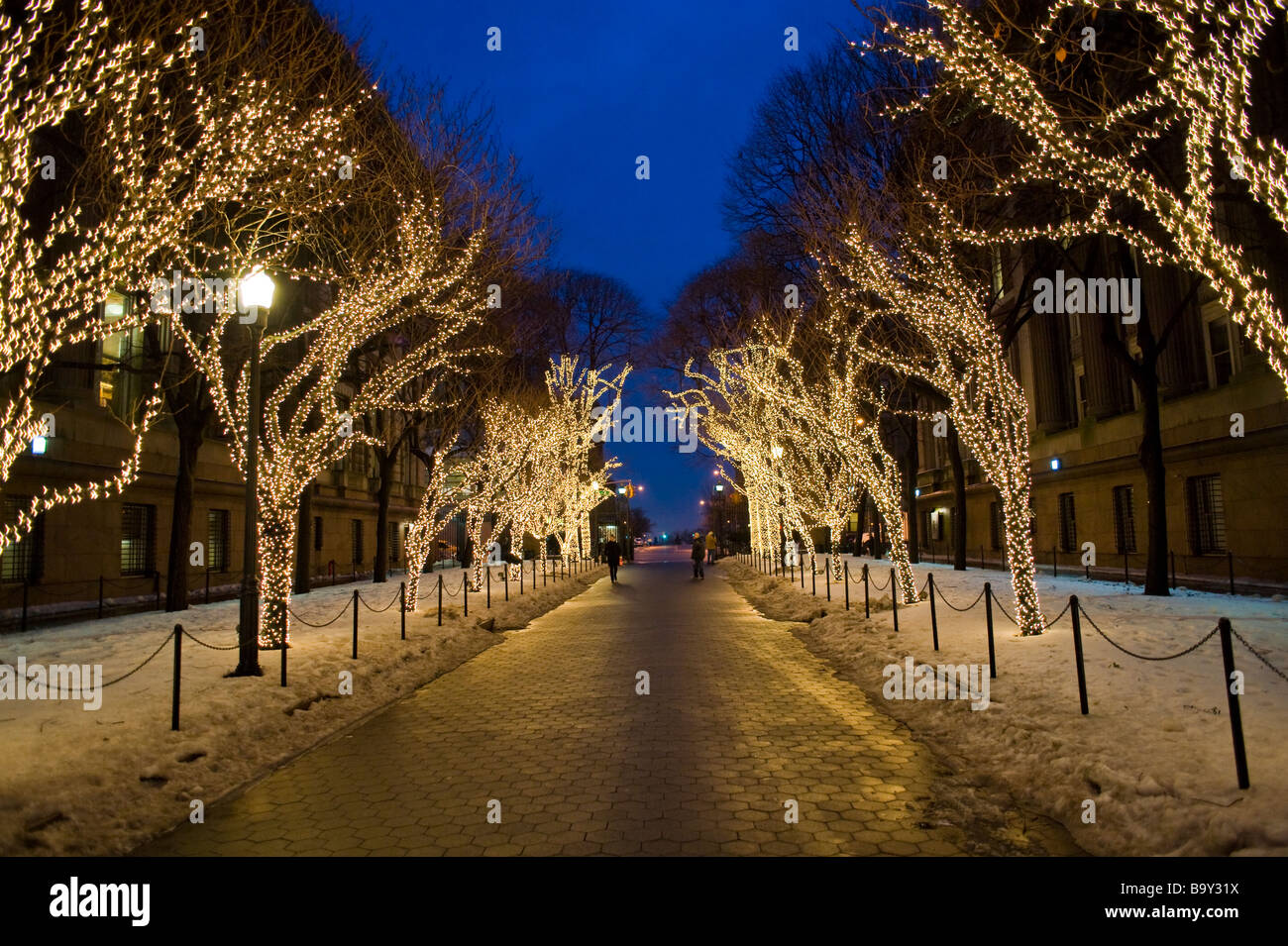 Christmas lights on trees in the Columbia University campus Stock ...