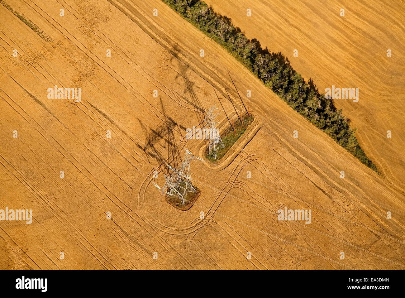Electricity pylons in field - Stock Image