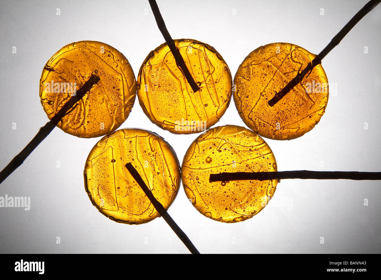 yellow lollipops on light grey background Stock Photo